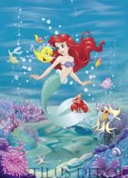 4-4020 Ariel
