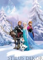 4-498 Jégvarázs (Frozen)